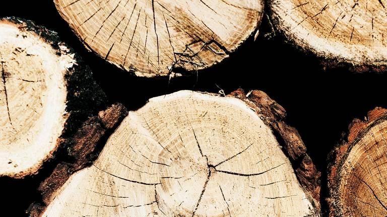 Holzstapel zur Verarbeitung mit martenisisch vergütetem Sägenbandstahl