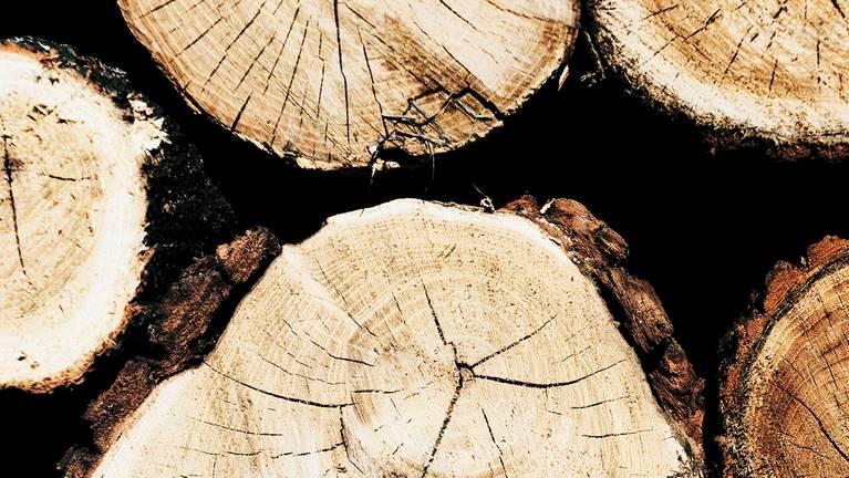 Pila de madera para procesar con cinta de sierra martenisica endurecida y templada